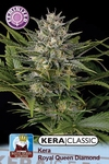 Kera seeds - Royal Queen Diamond