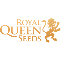 Royal Queen Seeds Feminisierte